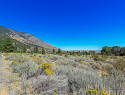 Eagle Ridge Road Genoa NV-print-016-15-DSC9334-2500x1668-300dpi