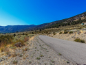 Eagle Ridge Road Genoa NV-print-032-34-DSC9350-2500x1668-300dpi